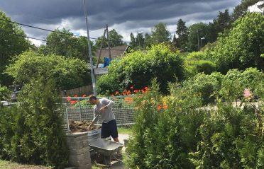 Planterad och klart!?